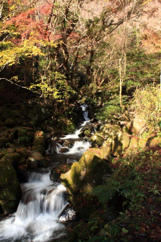 飛竜ノ滝散策