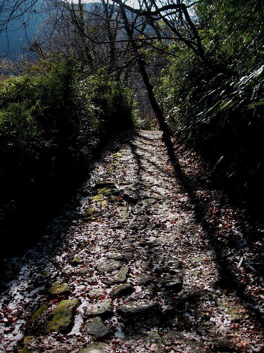 須雲川自然探勝歩道昔の石畳み