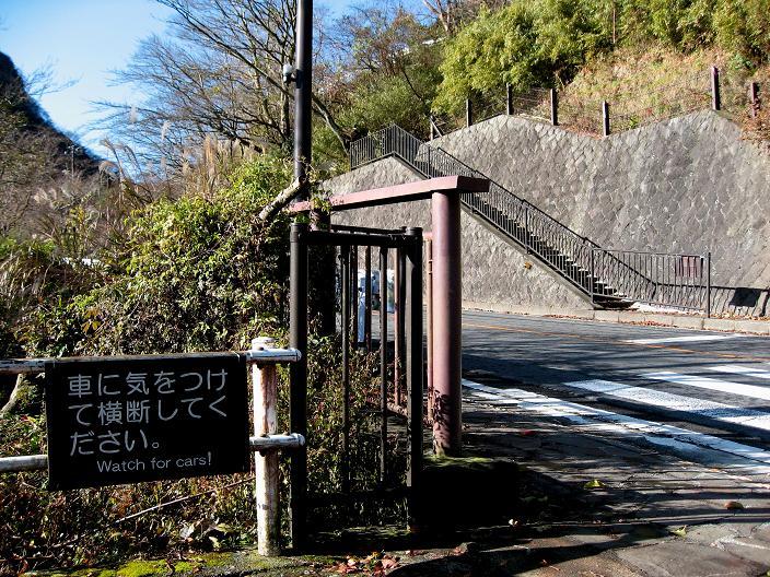 写真奥に見えている階段須雲川自然探勝歩道ルート