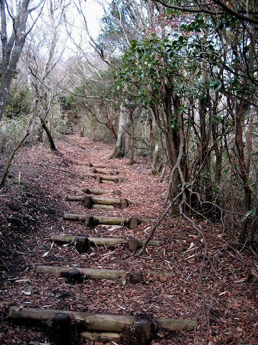 箱根外輪山のハイキングコース三国山