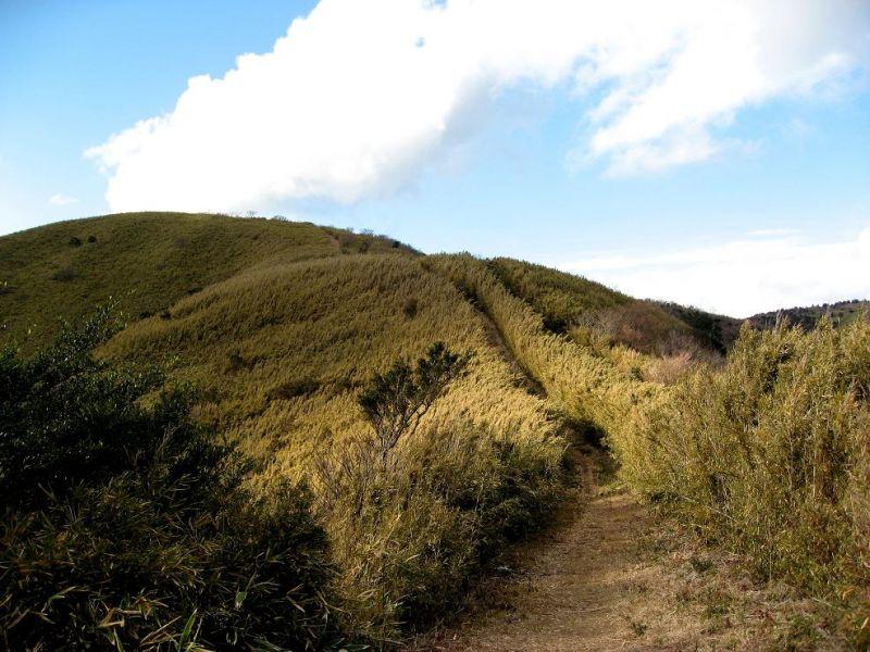 箱根外輪山一周ハイキング48kmアップダウンが連続