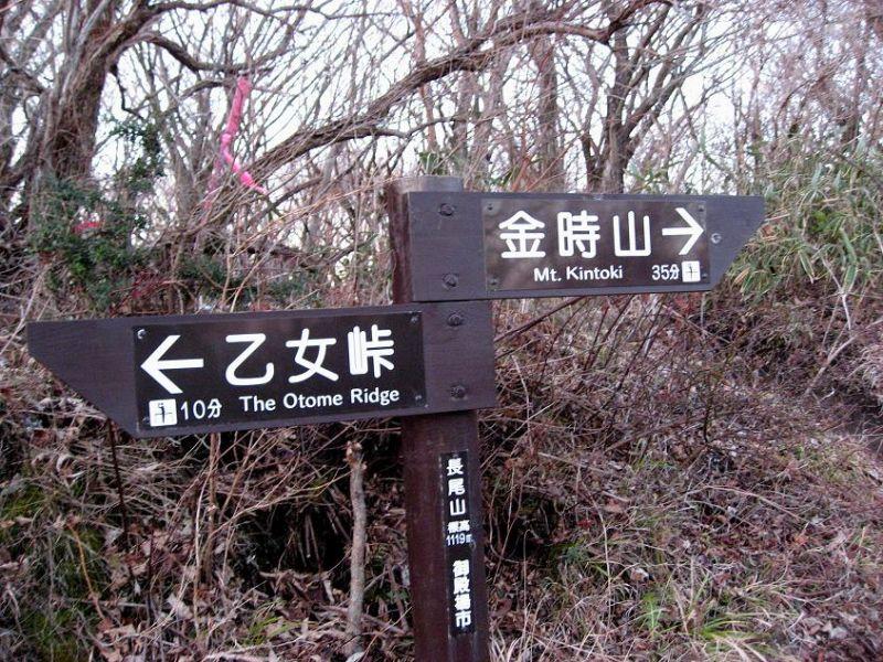乙女峠から金時山