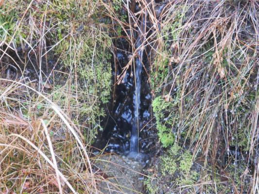 雁峠の近くにある水場