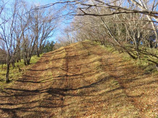 白沢峠から倉掛山へは急登