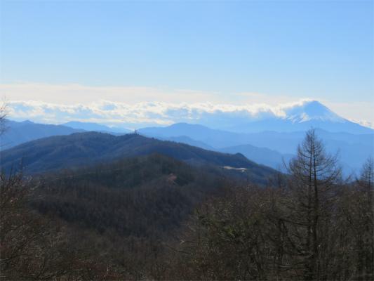 倉掛山周辺からの富士山
