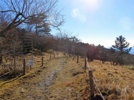 三窪高原の登山道
