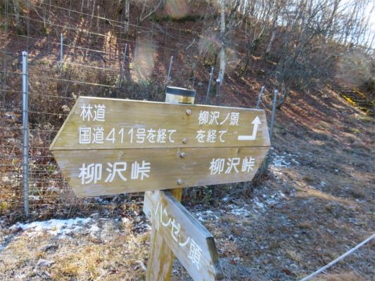 国道411号線を経て柳沢峠