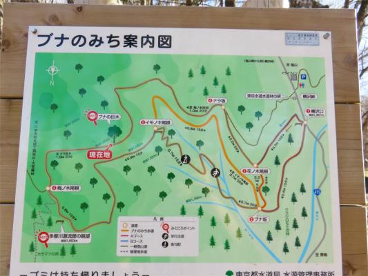 六本木峠経由で丸川荘