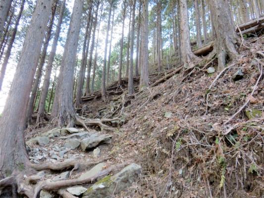 登山道の斜度