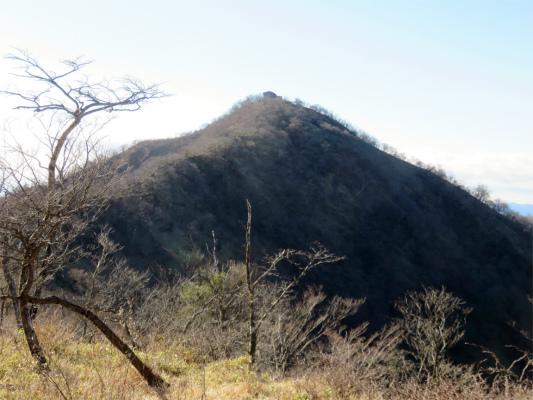 北側から見る塔ノ岳