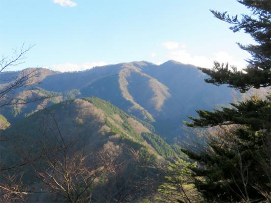 松茸山と丹沢三峰