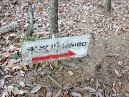 水沢川経由で松茸山