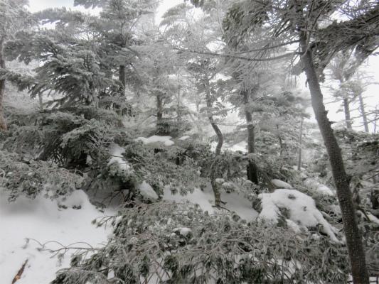 絶望的な雪山登りの斜面