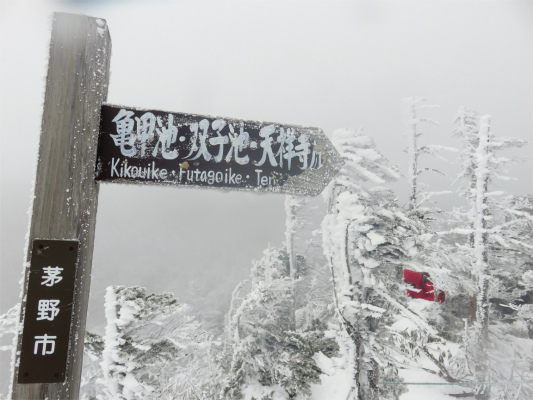 看板の裏から北横岳お鉢巡りのルート