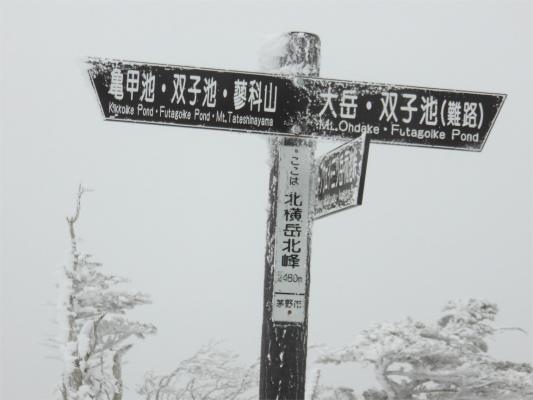 北横岳北峰(標高2480m)
