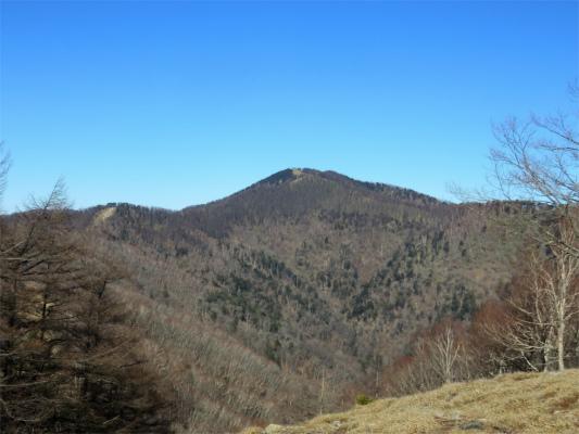 七ッ石山から雲取山