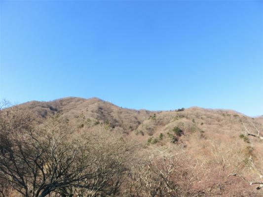 目指す大山