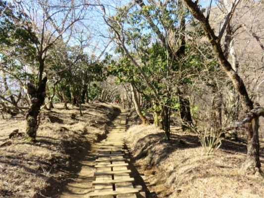 木道ロード