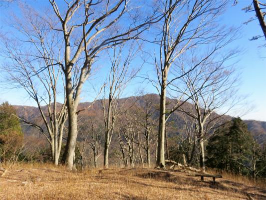大山とヨモギ平のベンチ
