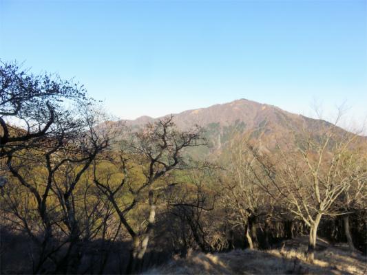大山も綺麗