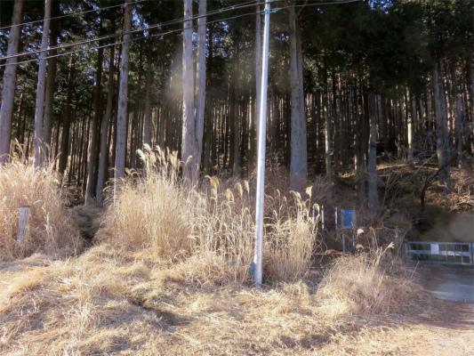 日本武尊の足跡への登山口