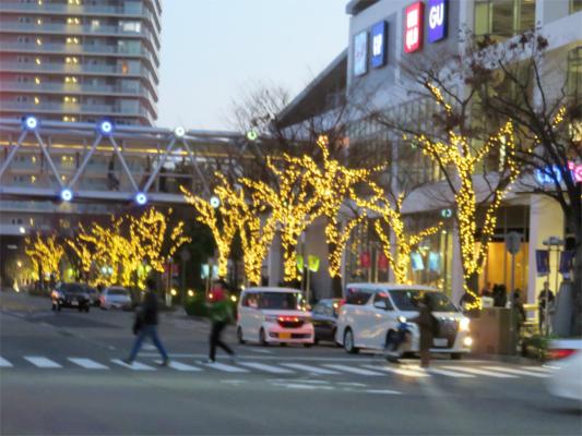 神戸ハーバーランドのMOSAIC周辺街路樹にもイルミネーション