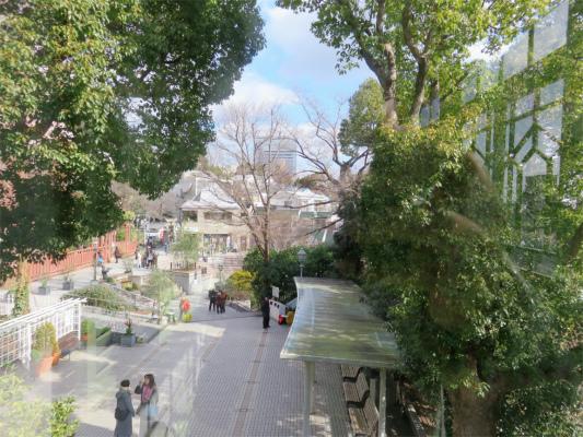 萌黄の館から見た外の景色