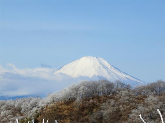 富士山景色が本当に綺麗