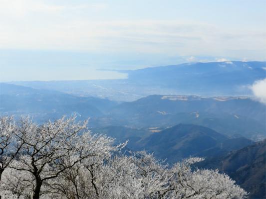 霧氷と真鶴半島
