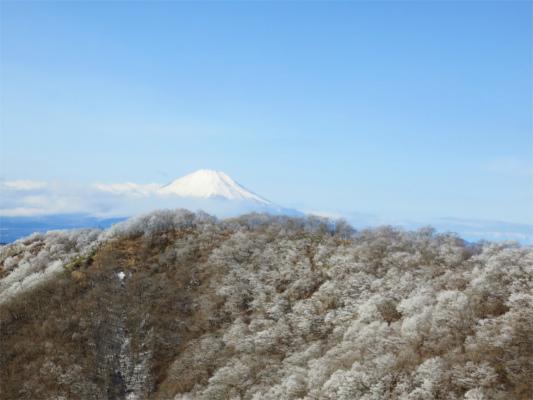 富士山と鍋割山方面の冬景色