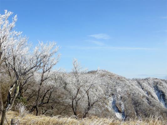 丹沢表尾根訪問も霧氷で真っ白