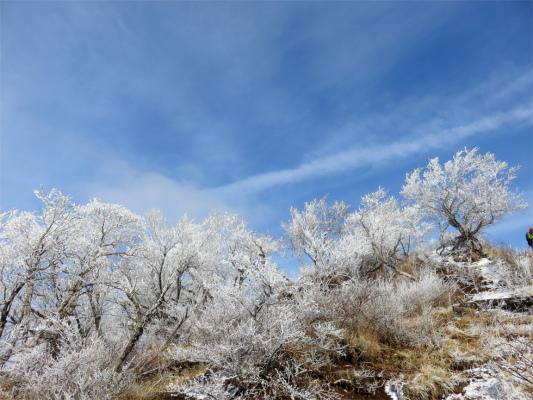 霧氷の冬景色は勘弁して