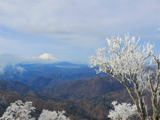 塔ノ岳からの富士山と霧氷のコラボレーションn