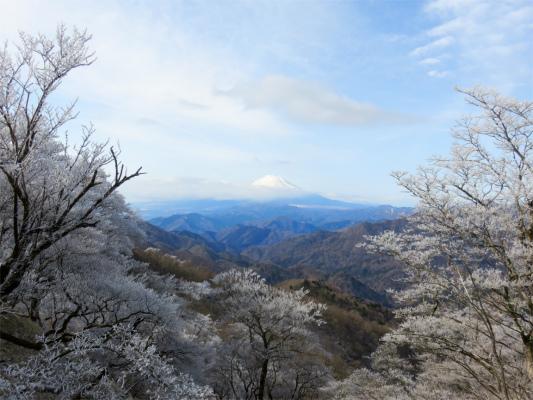 霧氷の額縁に映える富士山