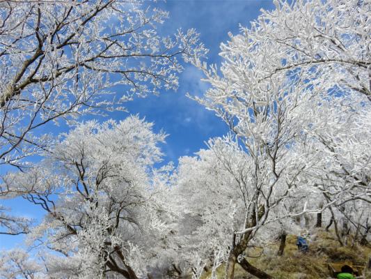 丹沢の冬景色