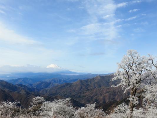 丹沢三峰縦走富士山は見えない