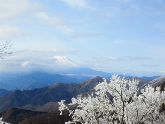 丹沢山の山頂からの富士山