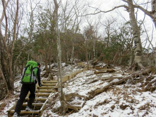 円山木ノ頭への登り