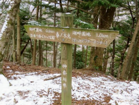 春ノ木丸の標高は487m