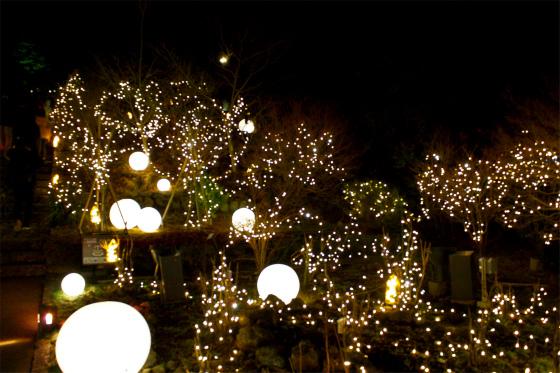 箱根強羅公園スプリングナイトガーデンの内覧会の様子