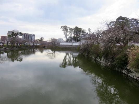 小田原城のお堀の様子