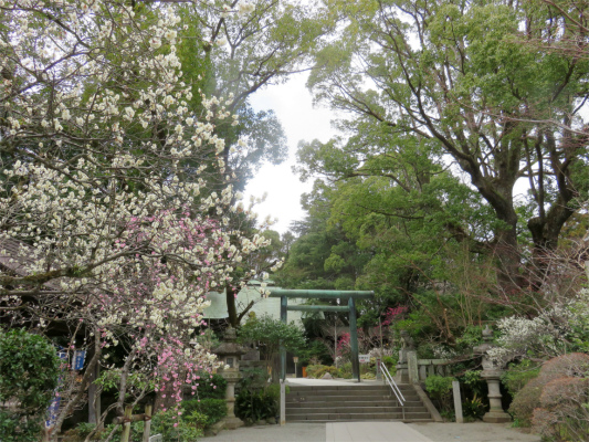 報徳二宮神社創建は明治27年(1894年)