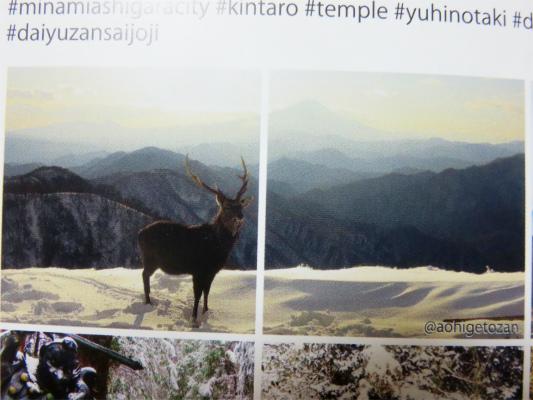 山の写真詳細