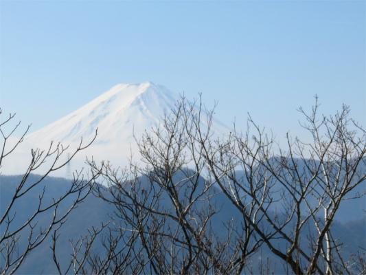 笹子雁ヶ腹摺山の山頂から富士山