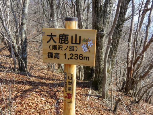 大鹿峠から地味に登り大鹿山