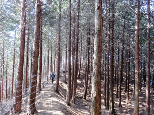 大鹿山から景徳院へのルート