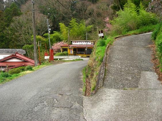 大野山ハイキングコース分岐