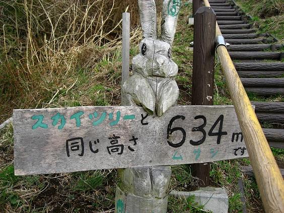大野山ハイキングコースの途中