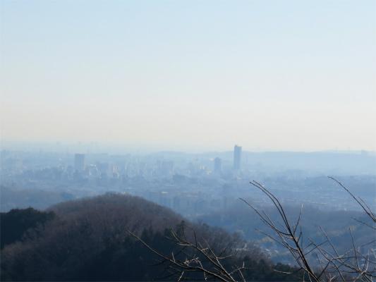 八王子市街の景色