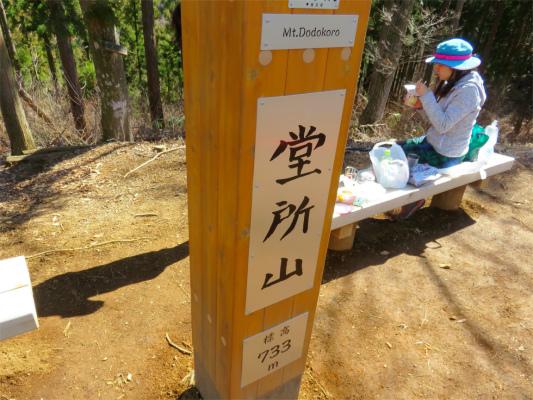 堂平山の標高は733m